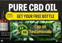Plus CBD Oil - Highest Grade CBD Oil, Claim Your Free CBD Oil