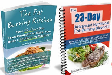 the fat burning kitchen book pdf